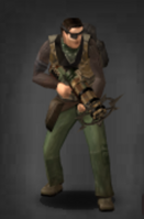 Survivor 6 66
