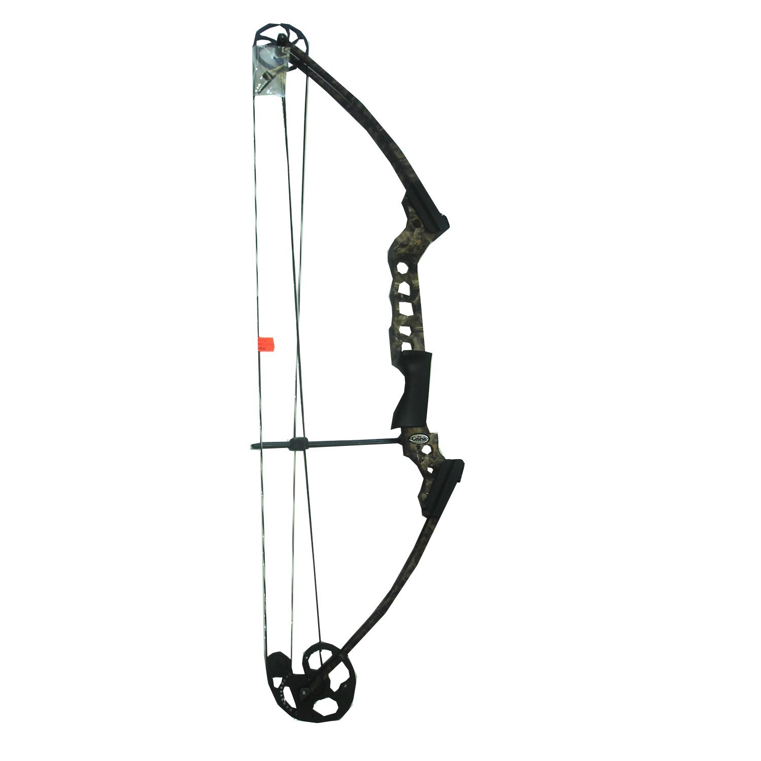 Compound bow real.jpg