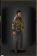 Camo Shirt - Woodland equipped male.png