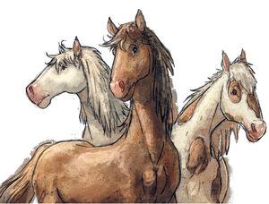Horsesss.jpg