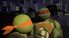 Tmnt raph and mikey by diamondt810-d6wenjj.jpg