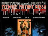 Teenage Mutant Ninja Turtles nr 29 (Mirage)