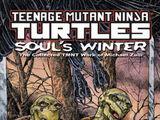 Teenage Mutant Ninja Turtles: Soul's Winter