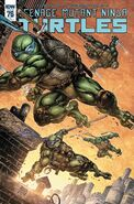 TMNT -76 Retailer Incentive Cover by Freddie Williams II