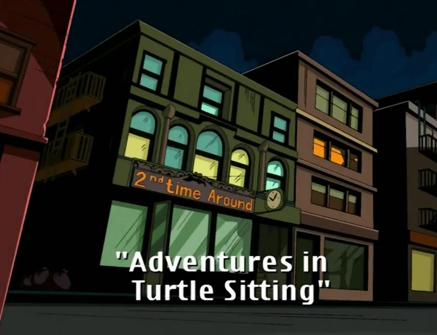 Adventures in Turtle Sitting (2003 TV series)