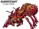 Shreddant