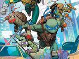 Ninja Turtles (MMPR/TMNT)