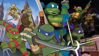 Trans-Dimensional-Turtles01.png