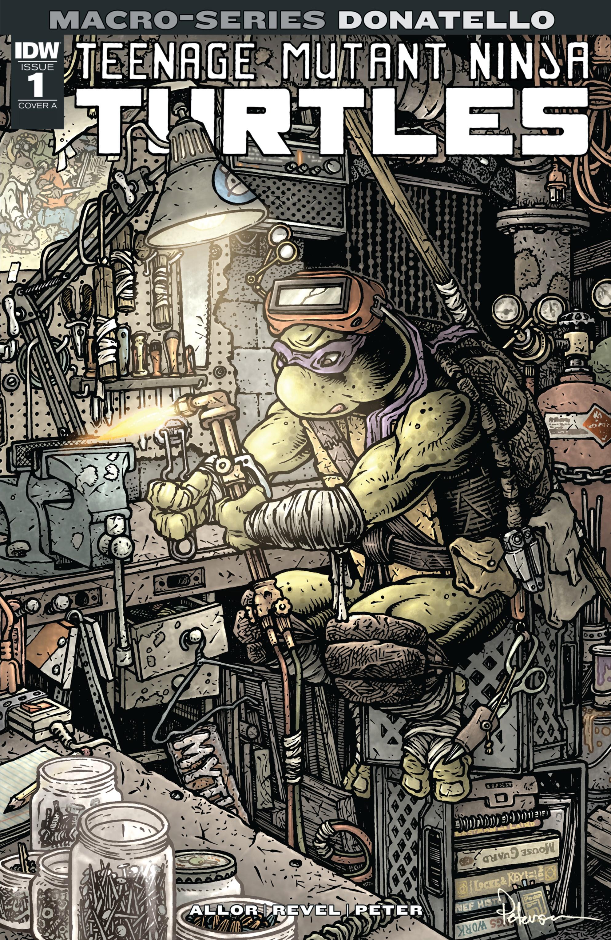 Donatello (IDW Macro-Series issue)