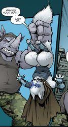 Teenage Mutant Ninja Turtles 040-011