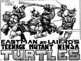 Ninja Turtles (Mirage)