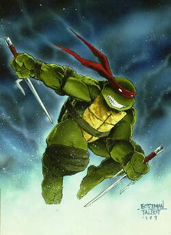 2509180-turtle123.jpg