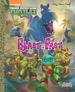 Tmnt-hsh-book-cover