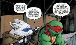 Teenage-mutant-ninja-turtles-46-raph-alopex