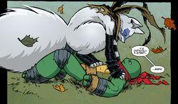 Teenage Mutant Ninja Turtles 031-008