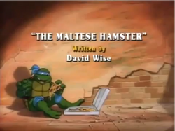 The Maltese Hamster Title Card.png
