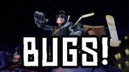 Insectos!