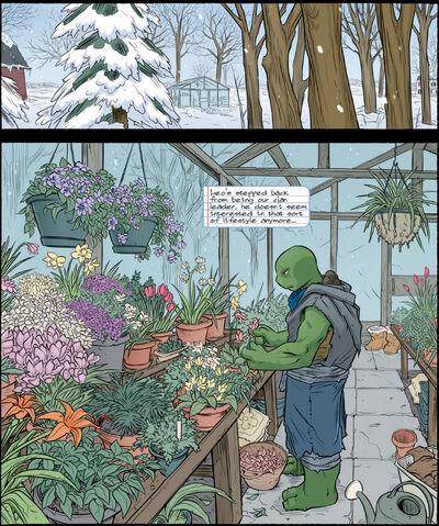 Leonardo's greenhouse.jpg