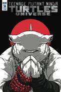 TMNT Universe 14 Cover B