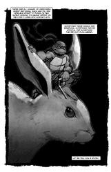 Adventures in Bunnysitting frontispiece