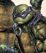 Batmantmnt - donatello
