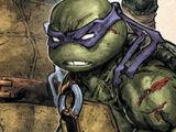 Donatello (Batman/TMNT)