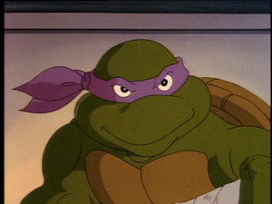 2500592-turtle584.png