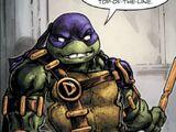 Donatello (Crisis in a Half Shell)