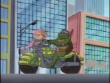 Turtlecycle (1987 TV series)