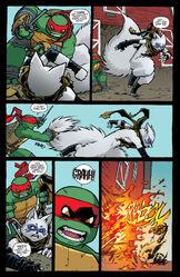 Teenage Mutant Ninja Turtles 032-008