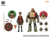 Robin & Raphael (2019 action figure set)