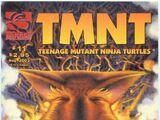 Teenage Mutant Ninja Turtles issue 11 (volume 4)