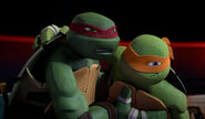 Mikey-and-Raph-TMNT-124