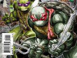 Ninja Turtles (Batman/TMNT)