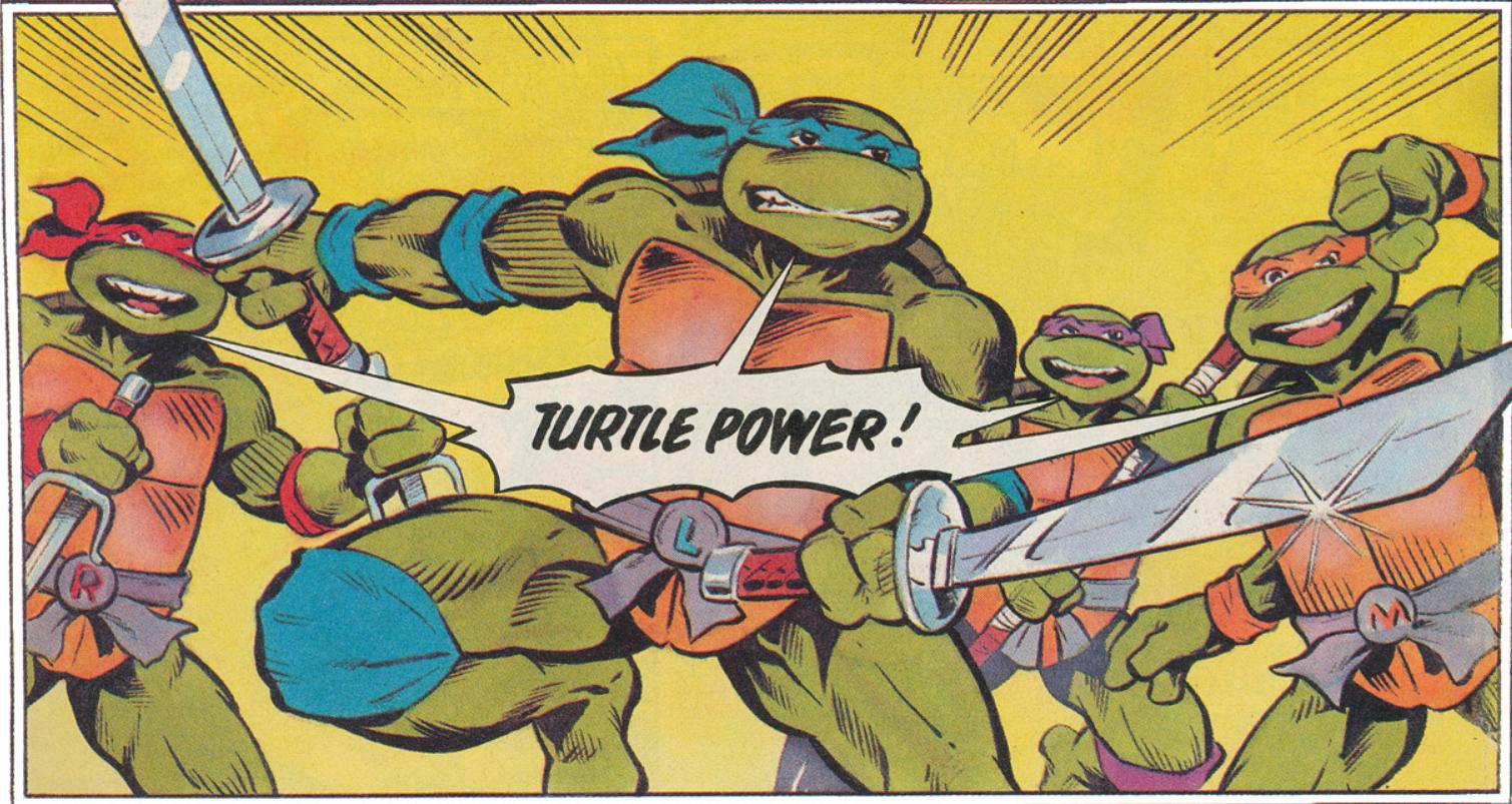 Hero Turtles (Fleetway)