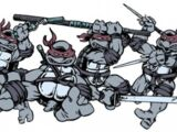 Weapons used by the Teenage Mutant Ninja Turtles