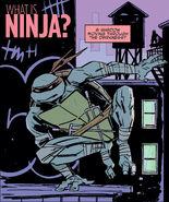 What is Ninja