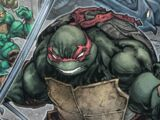 Raphael (Batman/TMNT)