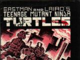 The Turtles' Origin is Told