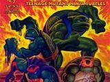Teenage Mutant Ninja Turtles issue 7 (volume 4)