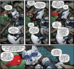 Teenage Mutant Ninja Turtles 040-014