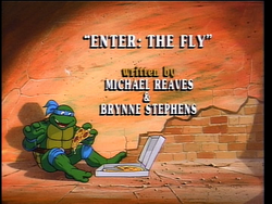 Enter The Fly 1.png