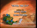 Enter: The Fly