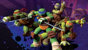 The Lean Green Ninja Team