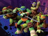 Ninja Turtles (2012 TV series)