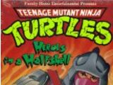 Teenage Mutant Ninja Turtles (1987 TV series) home video releases