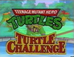 Turtlechallenge.png