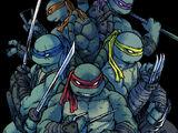 Ninja Turtles (IDW)