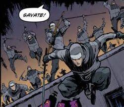 Savate Ninja.jpg
