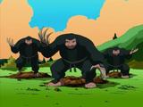 Mogura Ninja